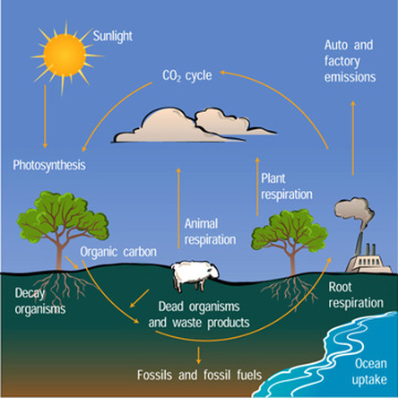 How Do Oil Spills Pollute The Water Cycle 47